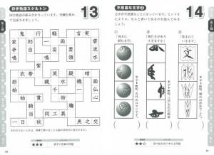 Dr.白澤の100歳までボケない 大人のひらめき「脳」パズル 1日10分 頭がフル回転する実践ドリル