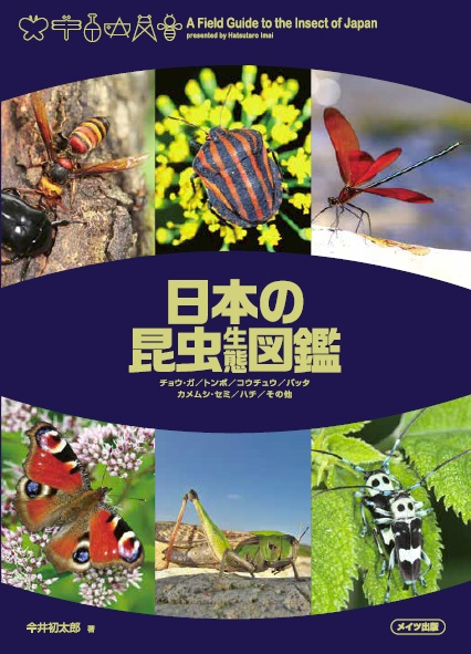 日本の昆虫 生態図鑑