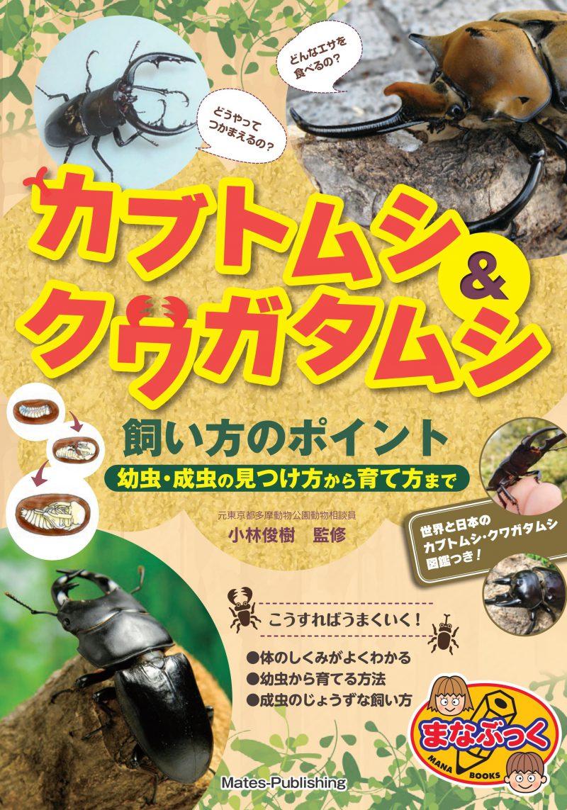 カブトムシ&クワガタムシ 飼い方のポイント 幼虫・成虫の見つけ方から育て方まで