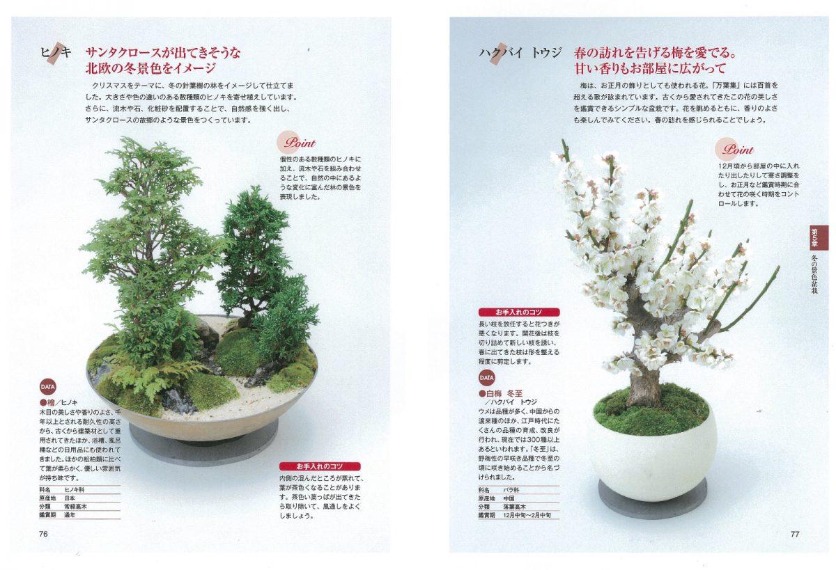 四季の景色盆栽 季節の草木を愉しむアイデアとポイント